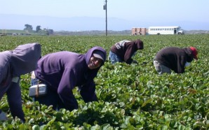 Signing of Farmworker and Domestic Worker Overtime Bills