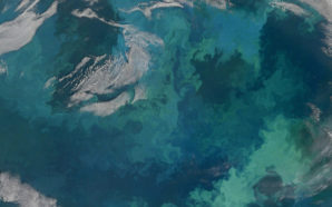 This huge 2010 phytoplankton bloom, visible from space, stretched for hundreds of miles across the Barents Sea between Russia and Scandinavia. Photo Credit: NASA Goddard Space Flight Center.   In this natural-color image from August 31, 2010, the ocean's canvas swirls with turquoise, teal, navy, and green, the abstract art of the natural world. The colors were painted by a massive phytoplankton bloom made up of millions of tiny, light-reflecting organisms growing in the sunlit surface waters of the Barents Sea. Such blooms peak every August in the Barents Sea.  The variations in color are caused by different species and concentrations of phytoplankton. The bright blue colors are probably from coccolithophores, a type of phytoplankton that is coated in a chalky shell that reflects light, turning the ocean a milky turquoise. Coccolithophores dominate the Barents Sea in August. Shades of green are likely from diatoms, another type of phytoplankton. Diatoms usually dominate the Barents Sea earlier in the year, giving way to coccolithophores in the late summer. However, field measurements of previous August blooms have also turned up high concentrations of diatoms.  The Barents Sea is a shallow sea sandwiched between the coastline of northern Russia and Scandinavia and the islands of Svalbard, Franz Josef Land, and Novaya Zemlya. Within the shallow basin, currents carrying warm, salty water from the Atlantic collide with currents carrying cold, fresher water from the Arctic. During the winter, strong winds drive the currents and mix the waters. When winter's sea ice retreats and light returns in the spring, diatoms thrive, typically peaking in a large bloom in late May.  The shift between diatoms and coccolithophores occurs as the Barents Sea changes during the summer months. Throughout summer, perpetual light falls on the waters, gradually warming the surface. Eventually, the ocean stratifies into layers, with warm water sitting on top of cooler water. The diatoms deplete most of the nutrients in the surface waters and stop growing. Coccolithophores, on the other hand, do well in warm, nutrient-depleted water with a l