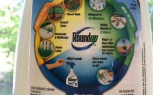 Monsanto, the maker of Roundup, has undergone some long and expensive legal battles to challenge those who say its weed killer is dangerous to human health. Photo Credit: Chris Thomas