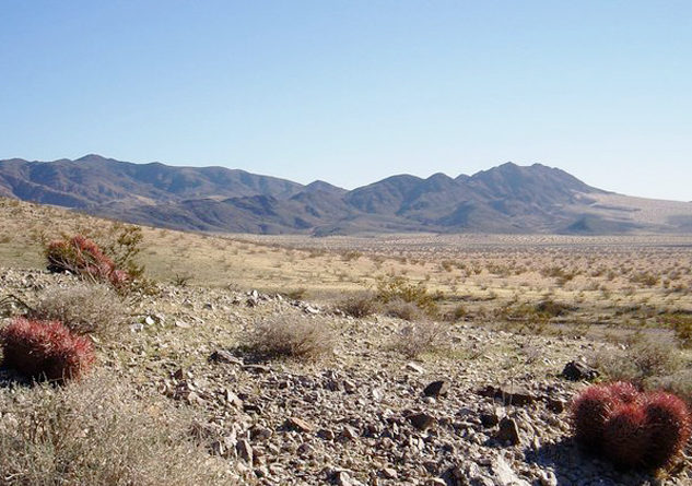 Mojave Trails National Monument, which connects Joshua Tree to Death Valley, could be downsized under a review by the U.S. Dept. of the Interior. Photo Credit: Bryn Jones
