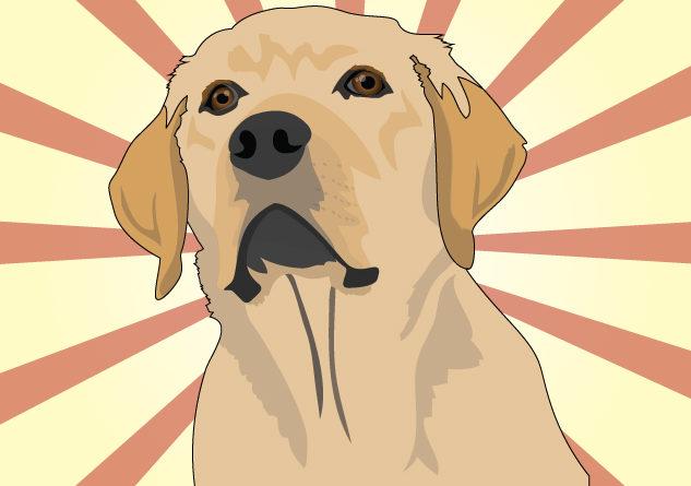 """Horóscopo Chino 2018, """"el año del perro"""""""